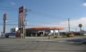 113号新潟・東港